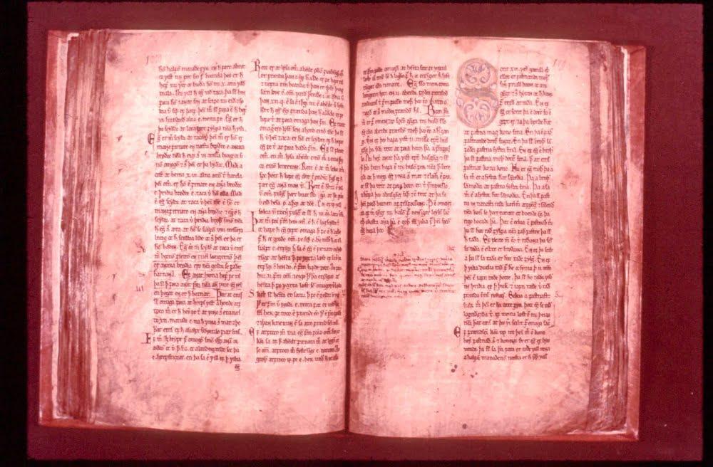 voluspa codex regius